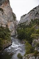 el hermoso paisaje del bosque de montaña foto