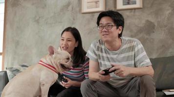 asiatisches Paar spielt Videospiele und Hund in der Nähe. video