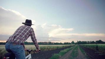 agriculteur mâle monter à vélo sur le terrain video