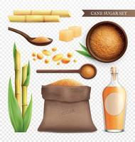 Cane Sugar Realistic Transparent Icon Set vector