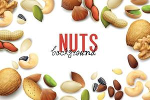 Realistic Nuts Background vector