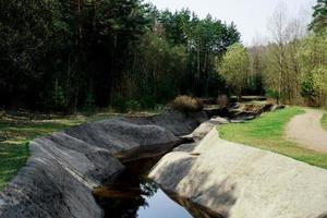 An artificial rowing channel created in the forest. Green area photo
