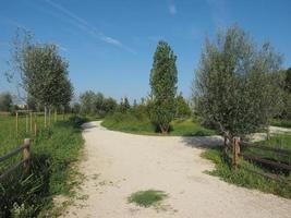 parque berlinguer en settimo torinese foto