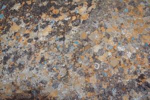 Superficie de piedra con musgo como textura de fondo foto