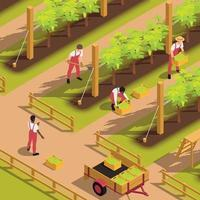 Harvesting People Isometric Composition vector