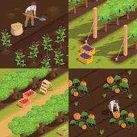 Farm Harvesting Isometric Concept vector