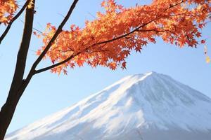 Autumn leaves and Mount Fuji JAPAN photo