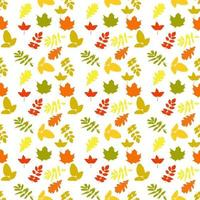 Naturalistic autumn leaves on White. Seamless pattern vector