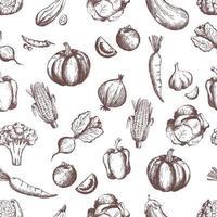 Vegetables seamless pattern. Handsketched vintage vegetables. vector