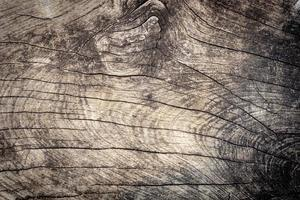 Fondo y textura de tablón de madera dura foto