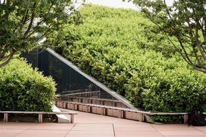 laberinto de espejos verdes en el parque foto