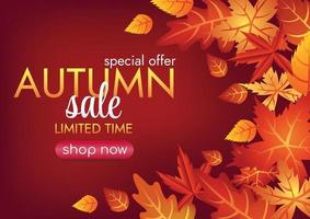 autumn leaves falling art vector background