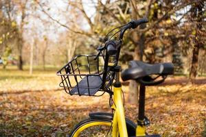 Yellow bike with fallen leaves in the setting sun. Autumn park photo