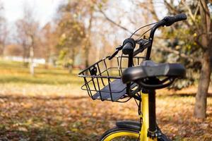 bicicleta amarilla con hojas caídas en el sol poniente. parque de otoño foto