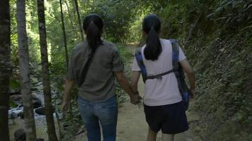 Mother and daughter walking together along the stream in the forest video