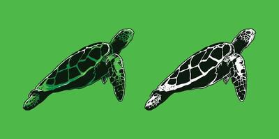 Hand-drawn green turtle vector illustration