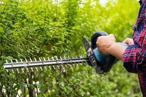 Jardinero sosteniendo un cortasetos eléctrico para cortar la copa de los árboles en el jardín. foto