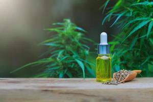 Cannabis seeds and CBD oil cannabis extract, green hemp leaf background, Medical cannabis concept. photo