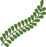 Green branch with round leaves vector