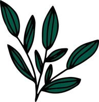 Doodle branch with big leaves vector