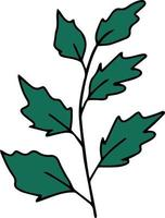 Doodle green branch with leaves vector