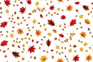 Autumn seamless pattern background with falling leaves. vector