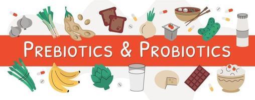 Vector banner sources of prebiotics and probiotics