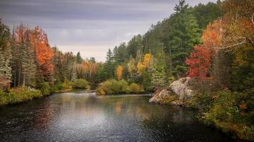 Fall foliage by Dead river in Michigan countryside during autumn time photo