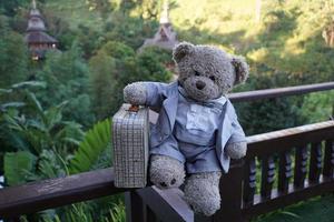 Teddy bear with a suitcase photo