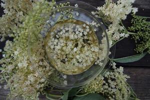 White elderflower tea photo
