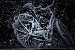 bicicleta en invierno foto