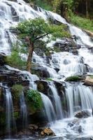 Flowing water in long exposure of tropical rainforest in Thailand. photo