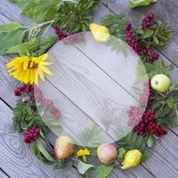 marco de otoño de flores, bayas y frutas. serbal, girasol, manzanas foto