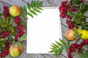 Fondo de otoño natural con lugar vacío para el texto. bayas de serbal foto