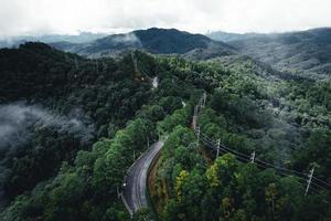 Road in the forest rainy season nature trees and fog travel photo