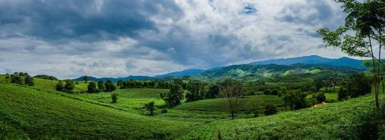 Landscape of mountain view, green mountain and green hill. photo