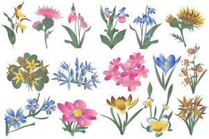 Flowering wildflowers and blooming flowers isolated set vector