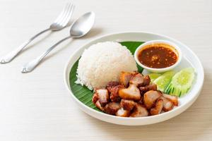Fried belly pork with rice with spicy sauce photo