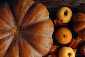 A bunch of pumpkins and apples photo