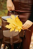 Woman with a backpack and foliage photo