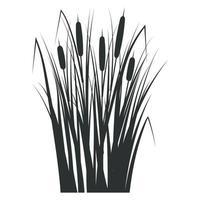 Silhouette of a reed in the green grass. Swamp and river plants. vector