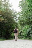caminar por el bosque temprano en la mañana brumosa foto
