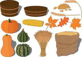 Harvest festival or thanksgiving day collection vector illustration