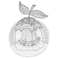 Apple hand drawn for adult coloring book vector
