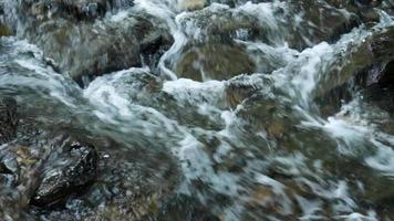 courant d'eau coule sur les rochers dans un parc naturel. video
