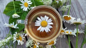 té de manzanilla en una taza de vidrio foto