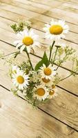 flores de manzanilla en un jarrón foto