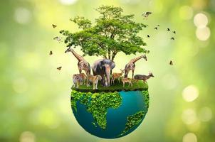 Concept of conserve wildlife on green background photo