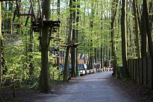 Climbing forest view photo