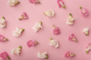 plano laico hermosa composición flores foto